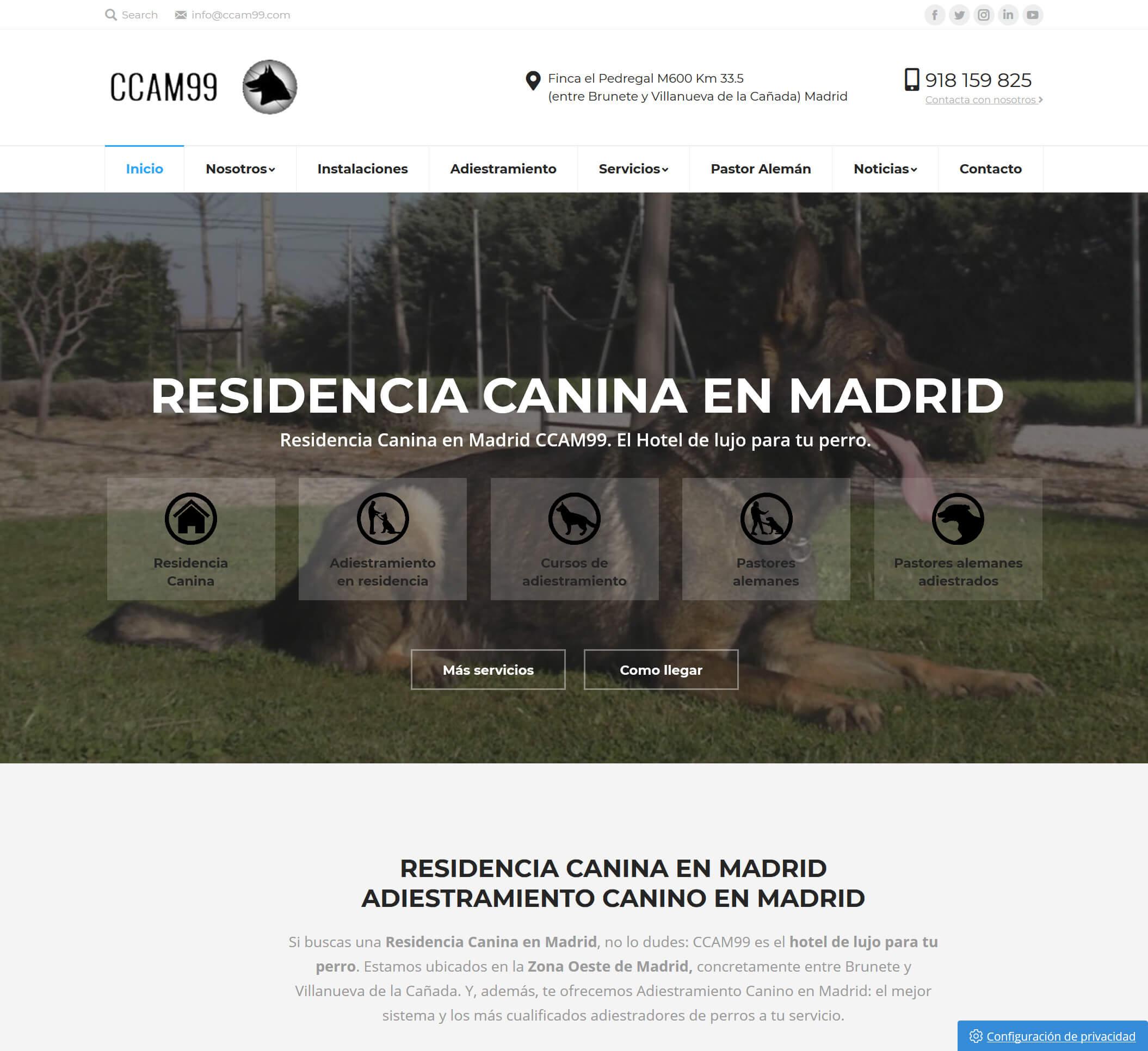 CCAM99